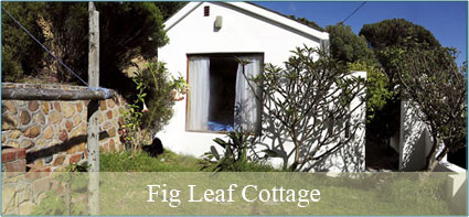 home-cottage-image